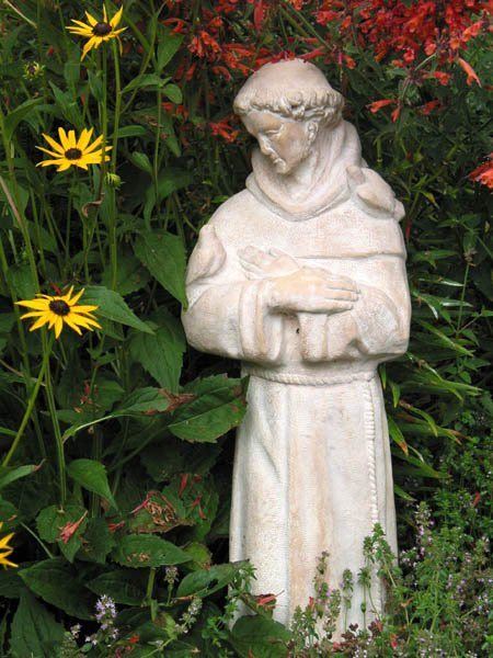 The Garden of St. Francis: Plants, Landscape, and Economy in Thirteenth-Century Italy