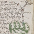The Voynich manuscript has remained so far as a mystery for linguists and cryptologists.