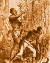 Slavery and the slave trade in pre colonial africa for African crops and slave cuisine