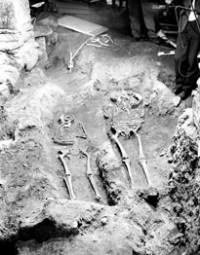 EXCAVATION in 1968: The picture shows two of the skeletons found under the chancel of Stavanger Cathedral. The skeletons were sent to the Anatomical Institute in Oslo, and then came home again – all mixed together. At the Archaeological Museum the bones are now assembled to constitute whole skeletons again. Photo courtesy University of Stavanger