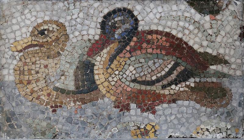 Images grecques du fminin : tendances actuelles de l