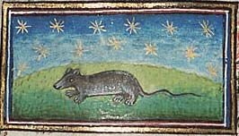 Medieval mouse