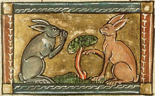 http://www.medievalists.net/wp-content/uploads/2012/06/medieval-rabbits.jpg