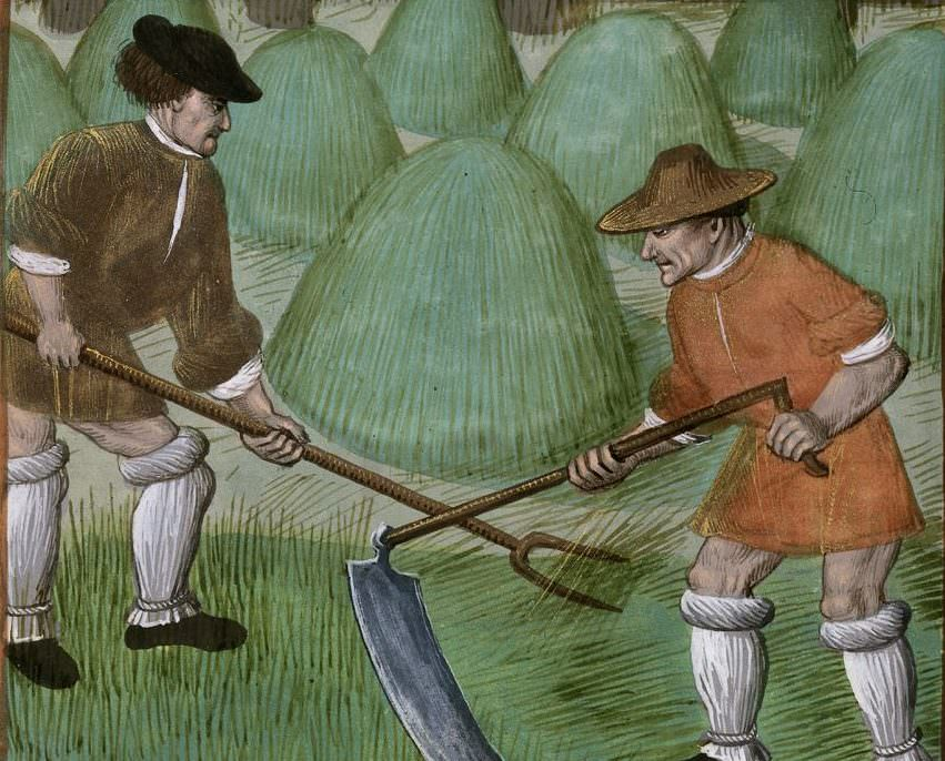 My Ancestor was an … Agricultural Labourer (Revised edition 2010)