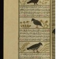 Falconry was valued as a major element of the cultural transfer between the medieval elite of western Christianity and Islam, connecting the pre-Islamic world of the Near East with the Umayyad and Abbasid courts on one hand and Christian Europe on the other.