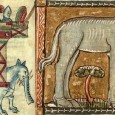 Why, after a scarcity of elephant ivory in northern Europe during the twelfth century, was there sudden access to such large tusks around 1240?