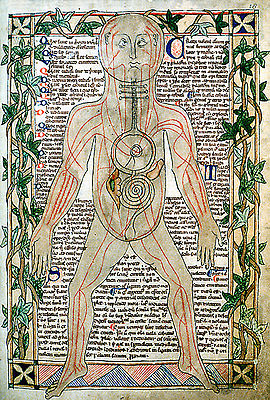 medieval medicine essay Free essay: the influence of medieval medicine on modern medicine the logic and principles of medieval medicine shaped those of modern medicine never was.