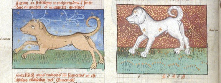 Miniatures of Canis Maior (Larger Dog) and Canis Minor (Smaller Dog), in tables from Ptolemy's Almagest.