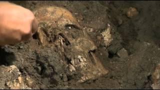 mona lisa skull
