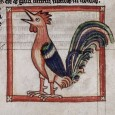 Poultry and Predators in Two Poems From the Reign of Charlemagne By Jan Ziolkowski Denver Quarterly Volume 24, no. 3 (1990) Introduction: Were there animals in the myths, trickster tales, […]