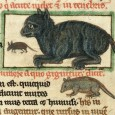 Cats in medieval Europe mostly had a bad reputation - they were associated with witches and heretics, and it was believed that the devil could transform himself into a black cat.
