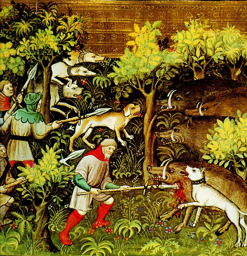 Medieval Hunting Spear