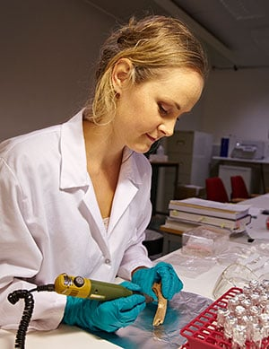 Elise Naumann investigates the skeletal remains of people who lived during the Iron Age. (Photo: Annica Thomsson)