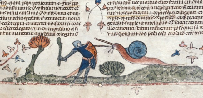 knight vs snail