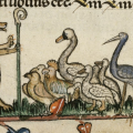 Do Animals Go to Heaven? Medieval Philosophers Contemplate Heavenly Human Exceptionalism