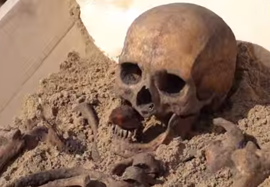 Vampire Skeleton from Poland