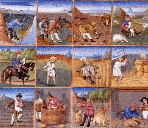 Year on the Medieval Farm