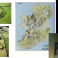 Finbar McCormick examines the archaeological research being carried out in Ireland, including early medieval burials, monastic sites and ringforts.