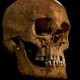 There is 'overwhelming evidence' that a skeleton discovered in the city of Leicester in 2012 is that of Richard III. The research also raises questions about the nobility of some of his successors to the English throne.