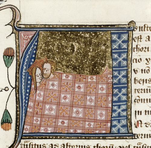 The Lewd, the Crude and the Downright Rude: Heterosexual Sex in Medieval Western Europe