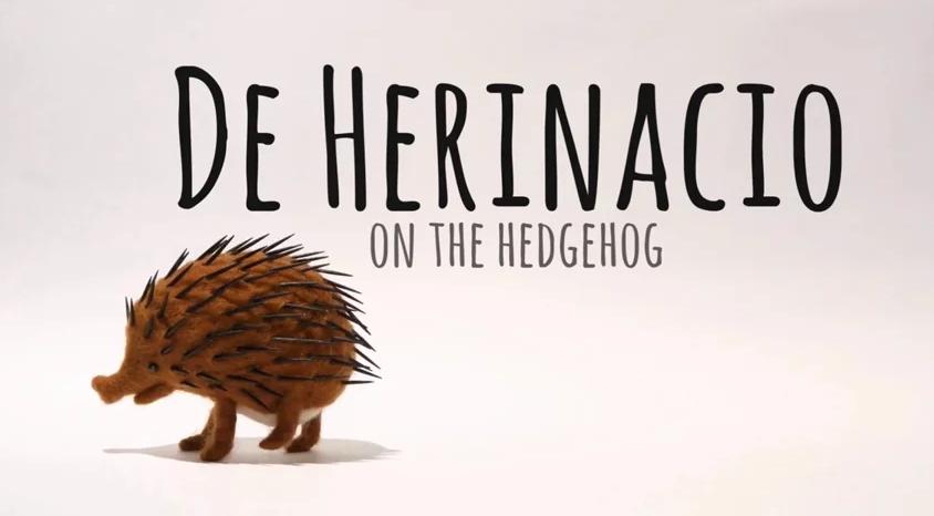 On the Hedgehog
