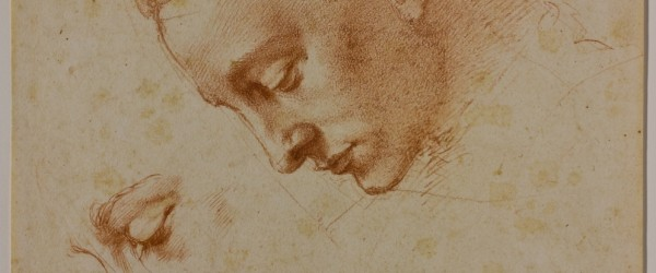 There are about 600 drawings by the Italian Renaissance artist Michelangelo that have survived to the present day - many of them stunningly beautiful - but he would probably have been 'absolutely horrified' that the general public can now see them.