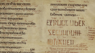 What is actually reliable about this highly literary colophon is Aldred's purpose in writing the gloss: to give the Evangelists a voice to address 'all the brothers'− particularly the Latinless.