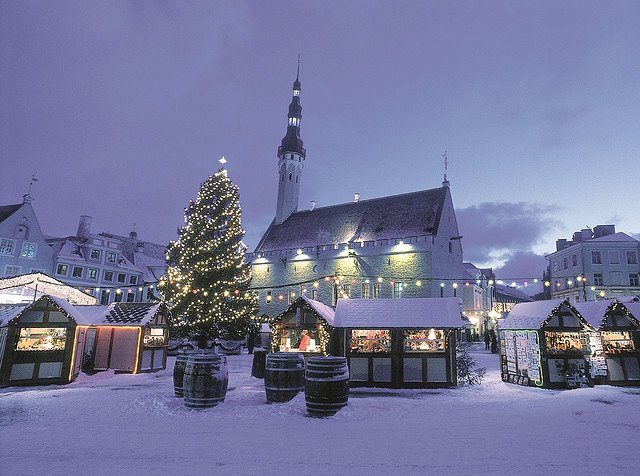 Christmas Tree in Tallinn's Town Hall Square - Photo by Toomas Volmer