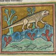 Here are 25 images of animals from the Middle Ages - can you figure out which creature they are?