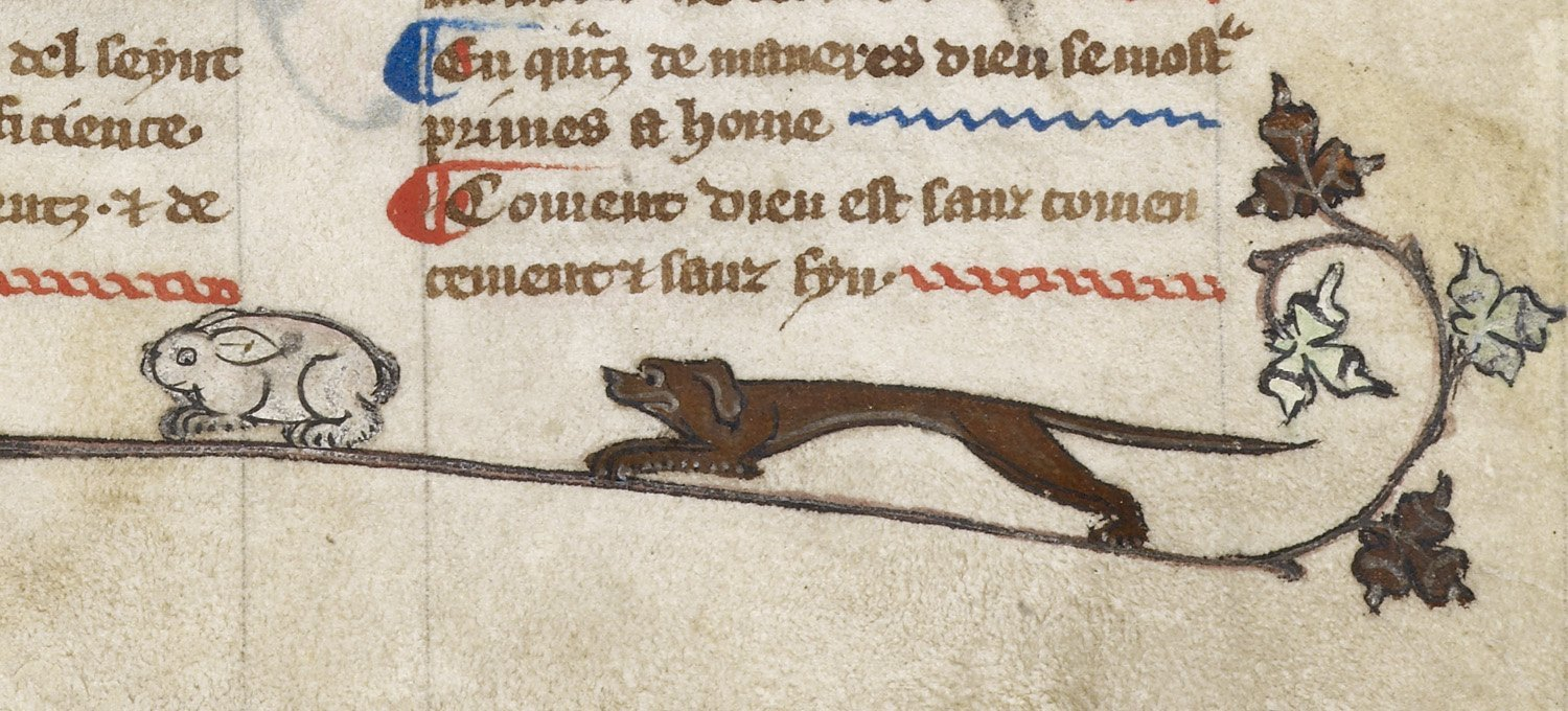Dog and Hare - Harley 1121  f 141