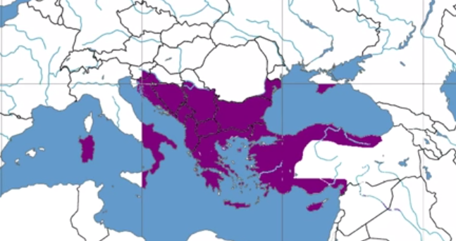 Rise and Fall of the Byzantine Empire