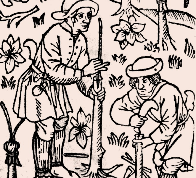 Ruralia Commoda – 14th century gardening manual on display in London