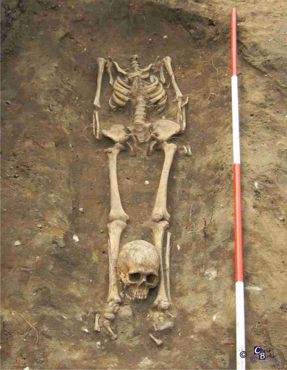 Decapitated deviant burial. Photo courtesy of Archeaology.co.uk