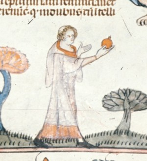 The apple - in British Library MS Royal 10 E IV   f. 210v
