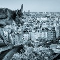 Gargoyles: Mysterious Monsters of the Middle Ages
