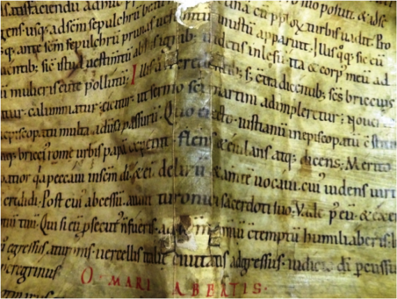 Passage from Gregory of Tours's Historia Francorum - image from Provenance Online Project  / Flickr