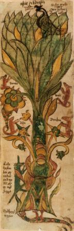The ashtree Yggdrasil from a XVIIcentury Icelandic manuscript.