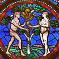 Is woman just a mutilated male? Adam and Eve in the theology of Thomas Aquinas