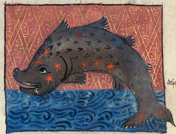 Dolphin depicted in the British Library MS Arundel 66 f. 37v