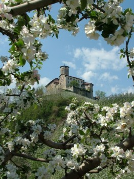 Castel Valer - photo by Christian Stringari / Wikimedia Commons