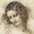 Leonardo, Rapunzel and the Mathematics of Hair