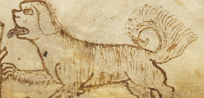 Medieval Dog Tricks