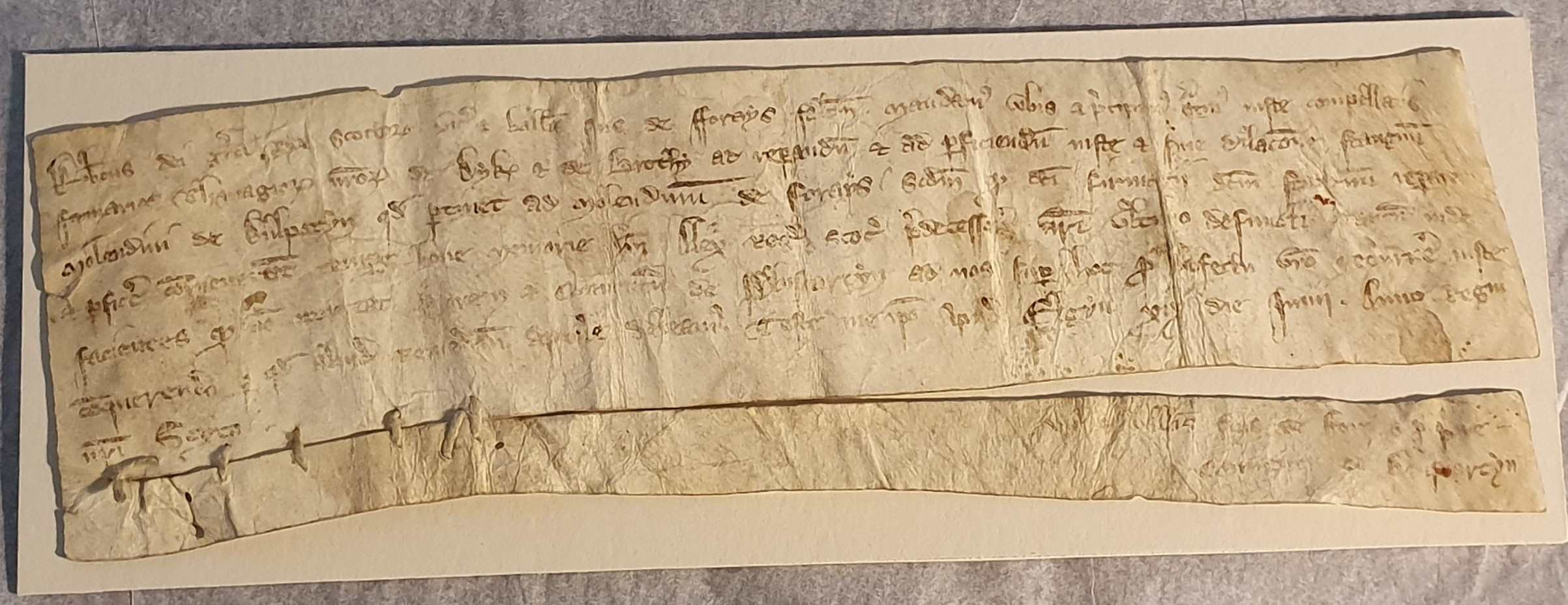 Crowdfunder launched to protect King of Scots letter